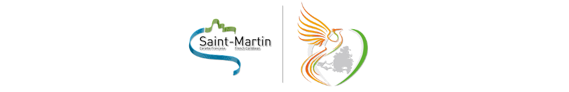 978 Saint-Martin - Autocollants plaques immatriculation