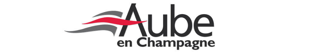 10 Aube - Autocollants & Plaques d'immatriculation