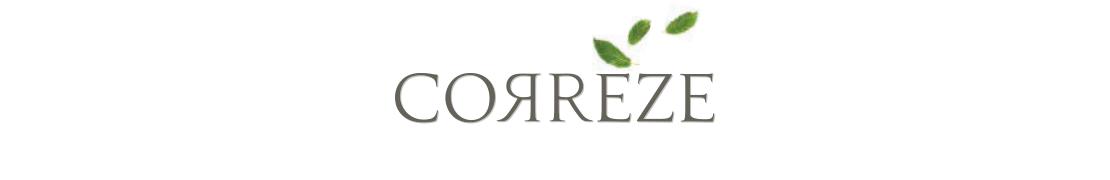 19 Corrèze - Autocollants & plaques d'immatriculation